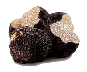 Distribución y comercialización de Trufa Negra en Segorbe