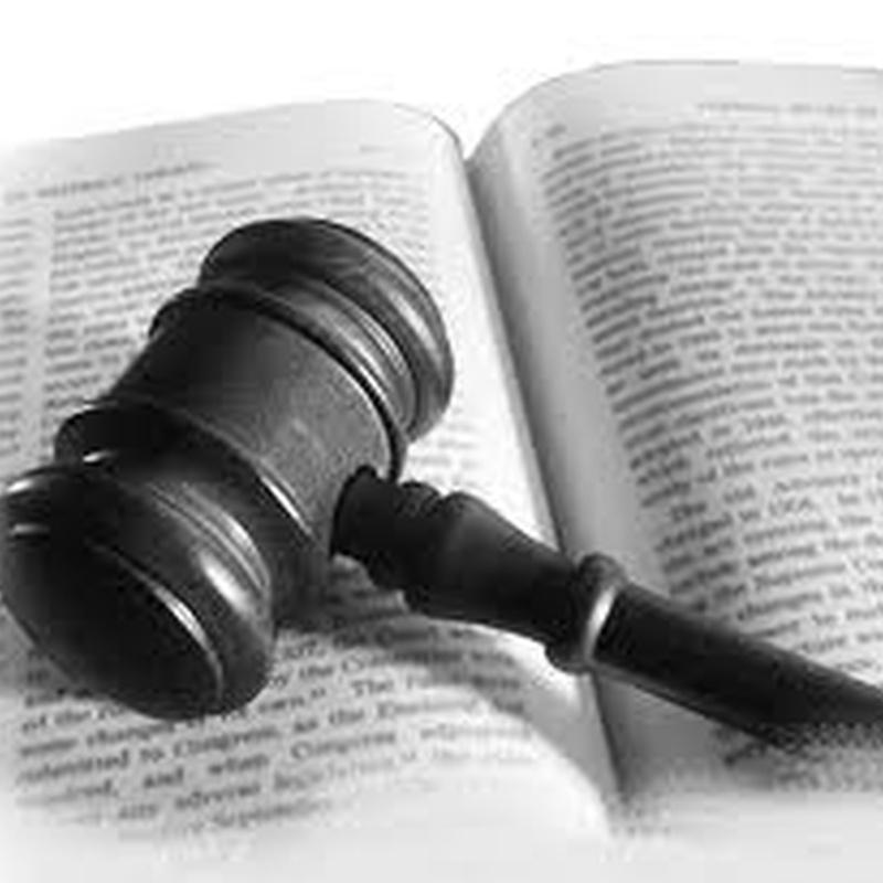 Derecho penal : Servicios  de Esther Barreiros González