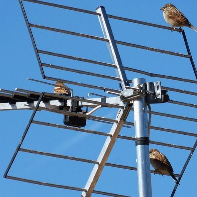 ¿Para qué sirve una antena de televisión?