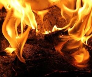 Todos los productos y servicios de Chimeneas y estufas: Forestal Arauzo