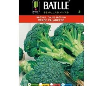 Semillas ecológicas de Calabaza butternut Ref. 25: Productos de Danimayos Crea Tu Jardin