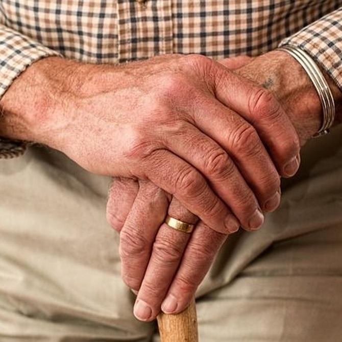 Personas mayores al volante