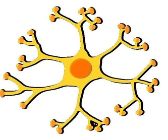 Electromiograma (EMG): Especialidades de Neurología de Lainez Andrés, J.M