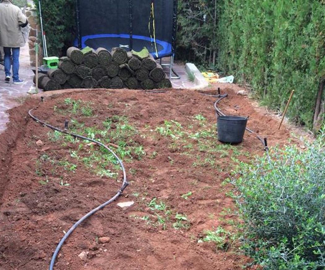 Trucos para insecticidas y compost caseros