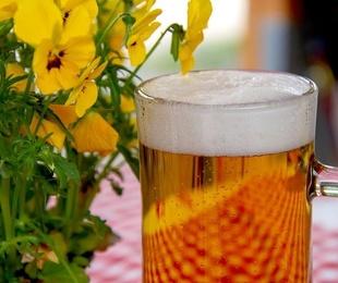 Te invitamos a la segunda cerveza