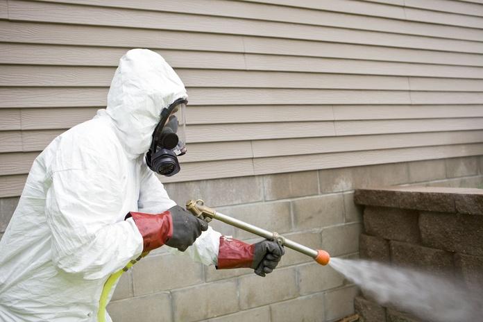 Fumigación: Servicios de Click Plagas