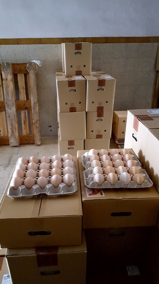 Huevos de primera calidad: Productos de Ous Cabrera