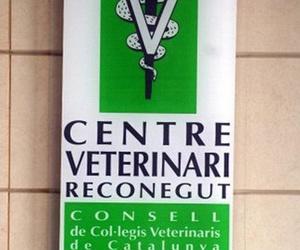 Centro reconocido