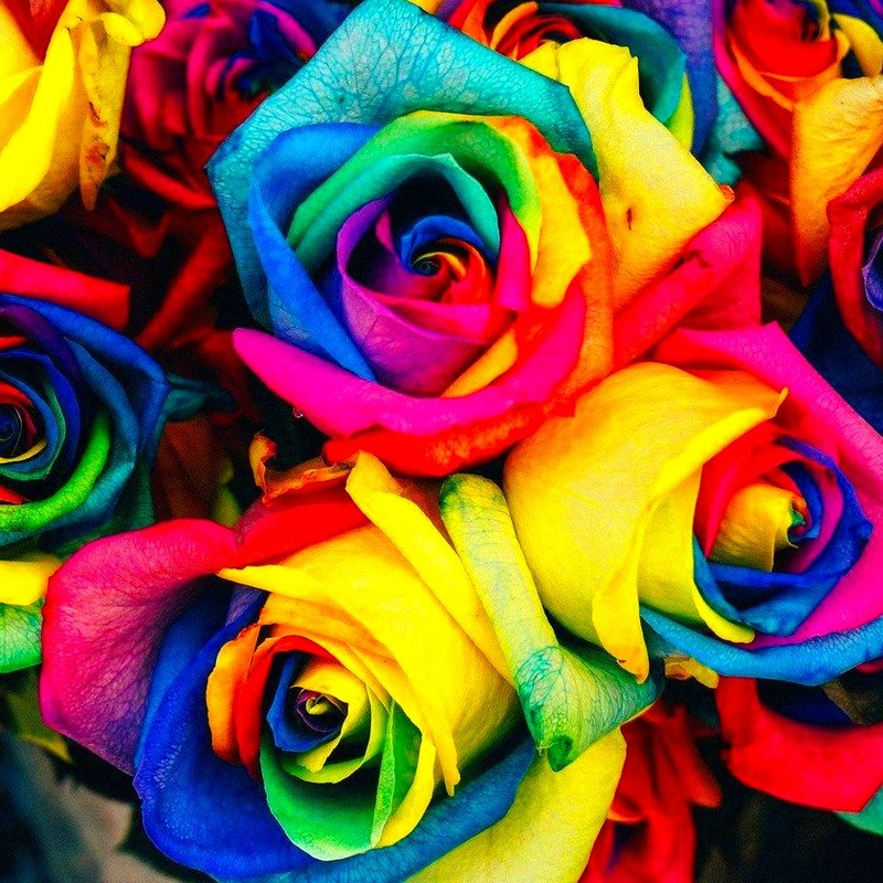 Terapia afirmativa Gay: Terapias de Noelia Ugena Psicología