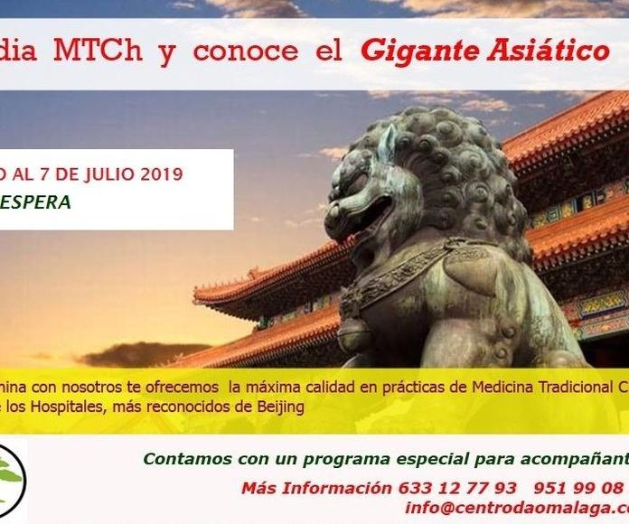 Viaje a China 2019: Cursos y tratamientos de Centro Dao Málaga