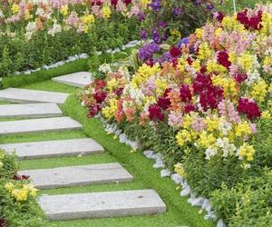 Servicios integrales de jardinería en Alicante