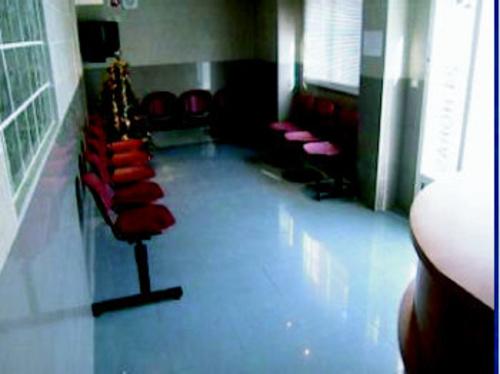 Fotos de Veterinarios en Valencia   Hospital Veterinario Constitución