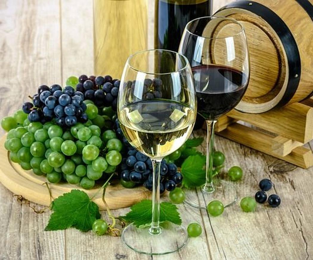¿Qué tipos de uvas se utilizan para el vino?