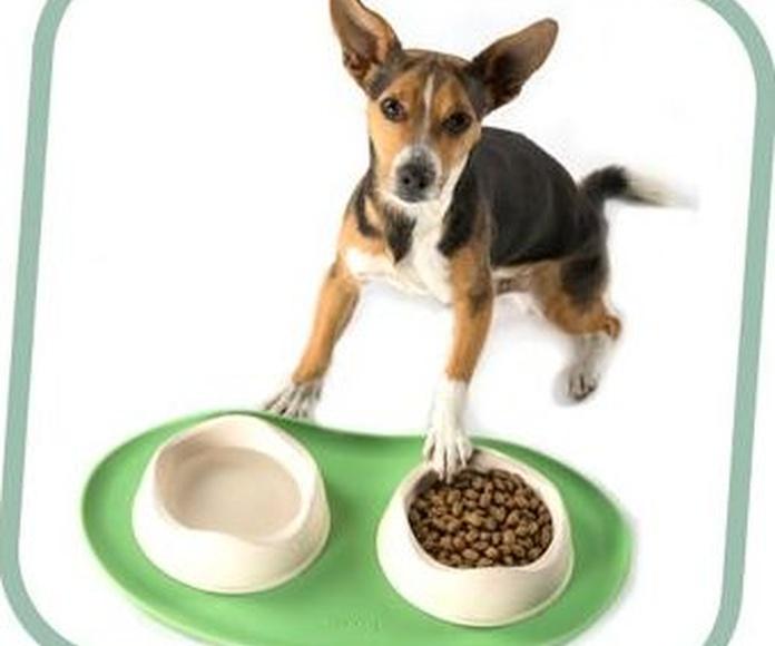 Beco Mat mantel silicona antiliscante para los comederos y bebederos de tu mascota