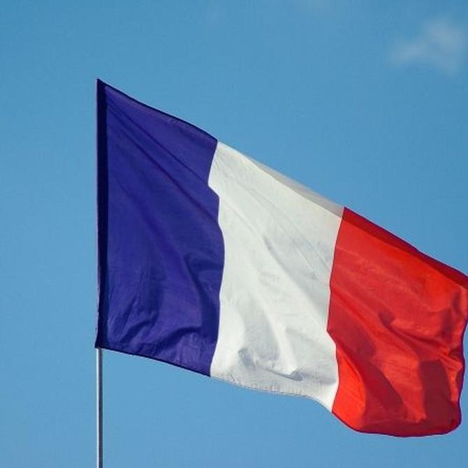 ¿Te has planteado estudiar francés?