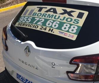 Servicio nacional e internacional: Servicios de Taxi Bormujos - Minusválidos -