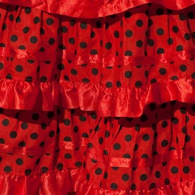 Los palos del flamenco