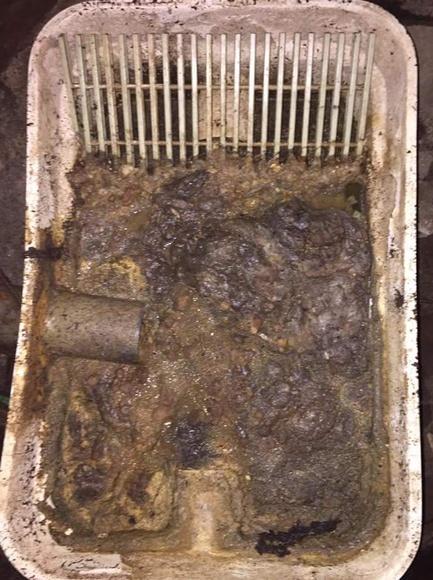 Mantenimiento de depuradoras: Servicios de Limpiezas Miguel 24H