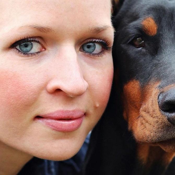Cómo tu mascota puede mejorar tu salud