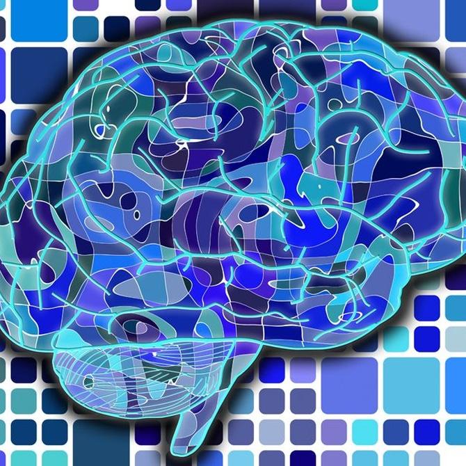 La importancia de seguir investigando el funcionamiento del cerebro