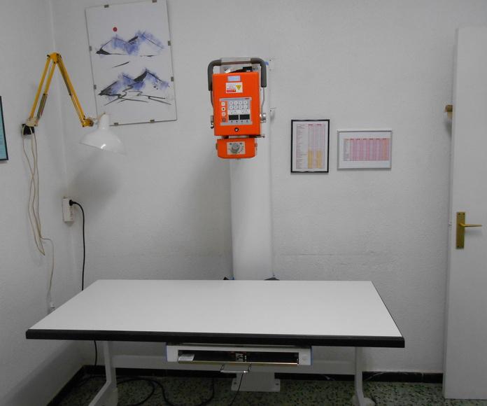 Diagnóstico por la imagen : Servicios de Clínica Vet. Verdum / Unitat Veterinaria