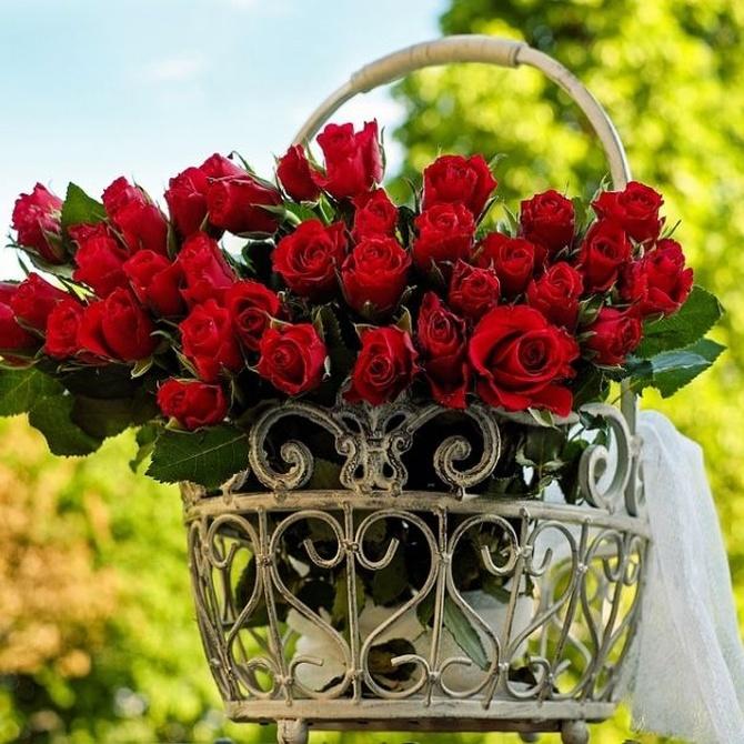 Flores, un original regalo de empresa