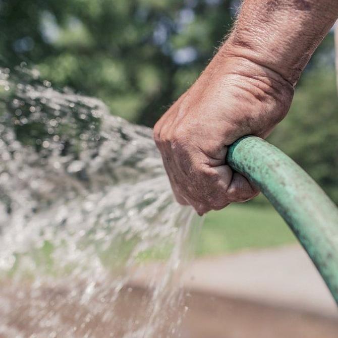 ¿Con qué manguera es mejor regar el jardín?