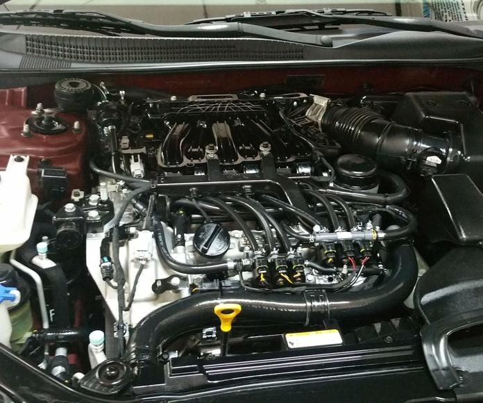 Limpieza de motores: Servicios de Talleres LGA