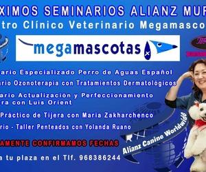 Proximos seminarios de ALIANZ WORLWIDE en Murcia