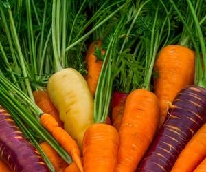 Lo que sabes, o quizá no, acerca de las zanahorias
