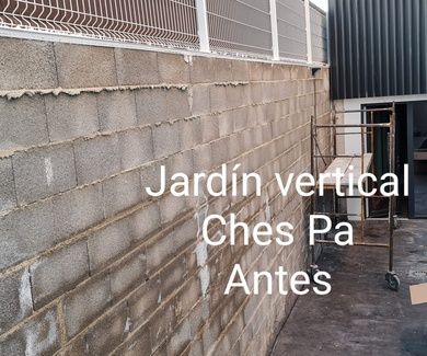 Proyecto Jardín vertical artificial en Valencia