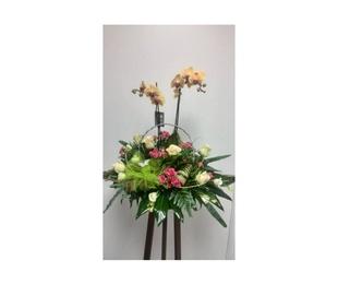 Centro floral decorativo con orquídea