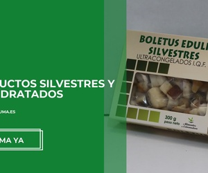 Distribuidor de conservas en Tarragona | Productos Silvestres Julián Marín