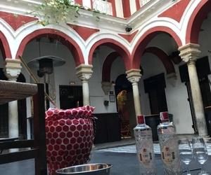 Bar de copas en Jerez de la Frontera