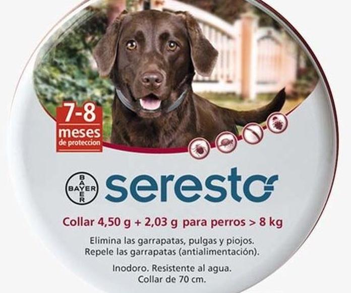 Seresto collar para perros antiparasitario comprar en Madrid