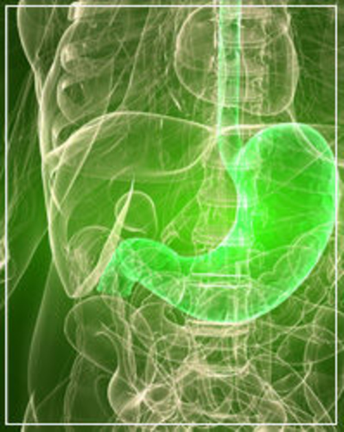 Fotos de  Medicos Especialistas de Aparato Digestivo y Endoscopia en Huesca   CADE