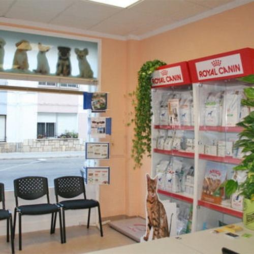 Veterinarios en Vinaròs | Clínica Veterinaria Faunivet