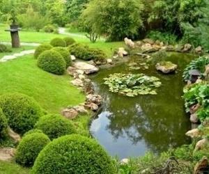 Mantenimiento y conservación de jardines