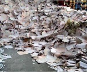 Destrucción de documentos en Madrid centro | Hernández C.B.
