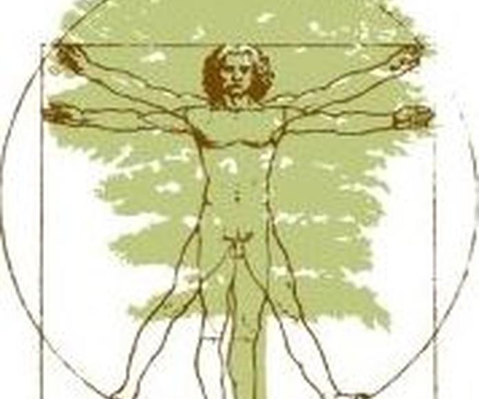 Xornada arboricultura