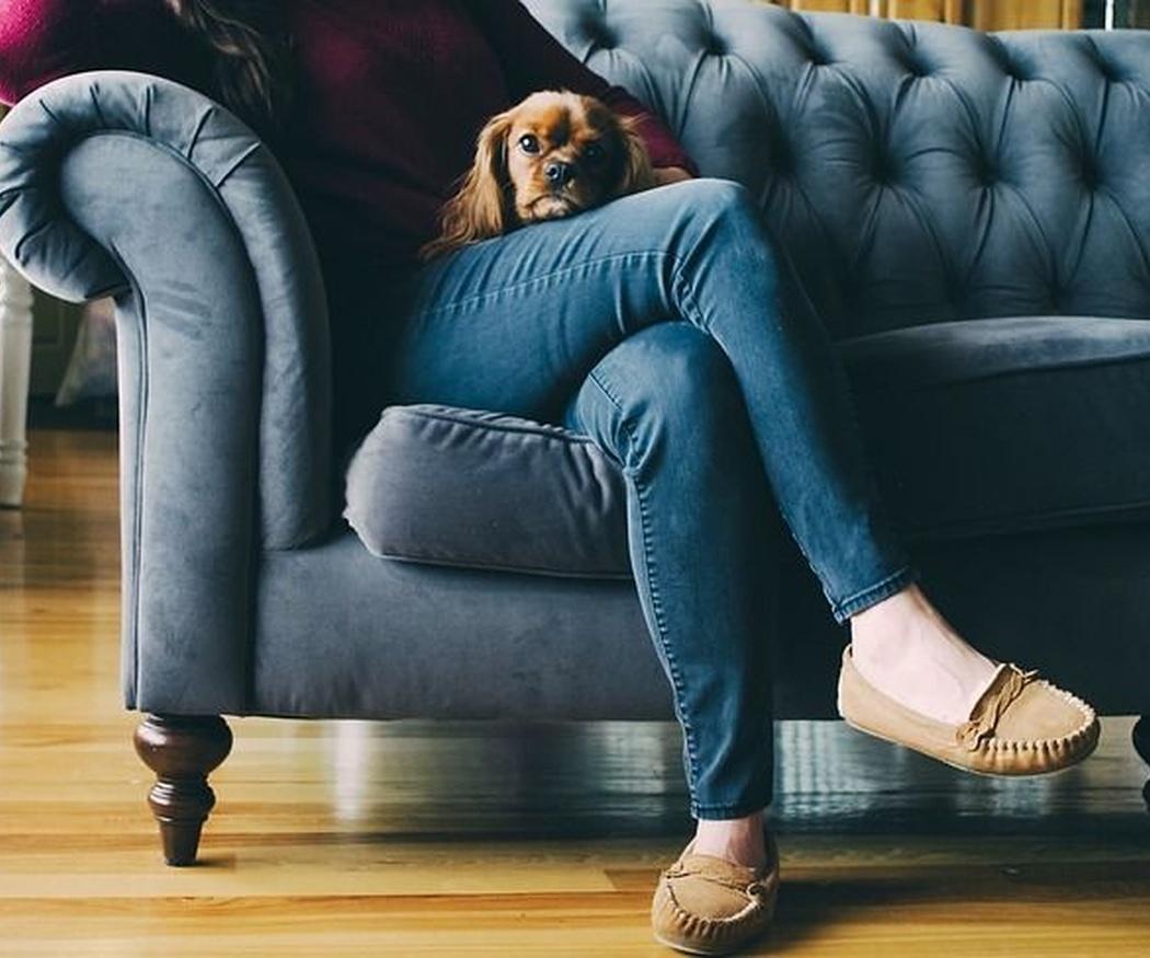 ¿Cómo elegir el sofá más adecuado para ti?