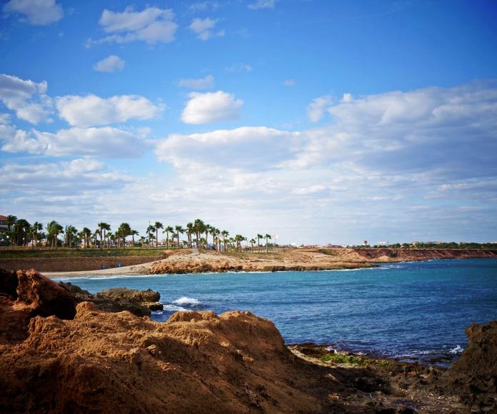 ¿Qué hacer en Orihuela?: Servicios de Apartamentos Turísticos Shoal