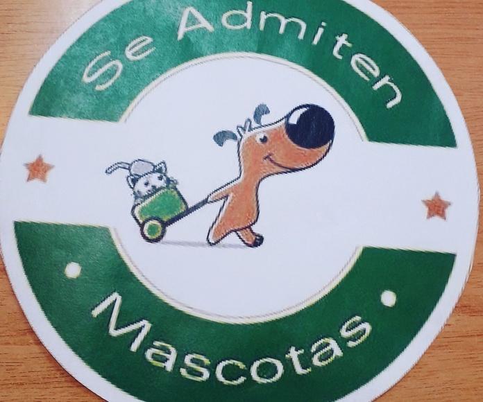 La cajita de costura en Ourense, se admiten mascotas