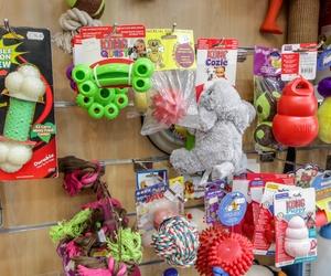 Productos para mascotas en Mollet del Vallès, Barcelona