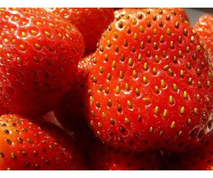 Fresón de Huelva: Productos de Mundifruit