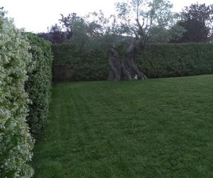 Jardinería en Girona