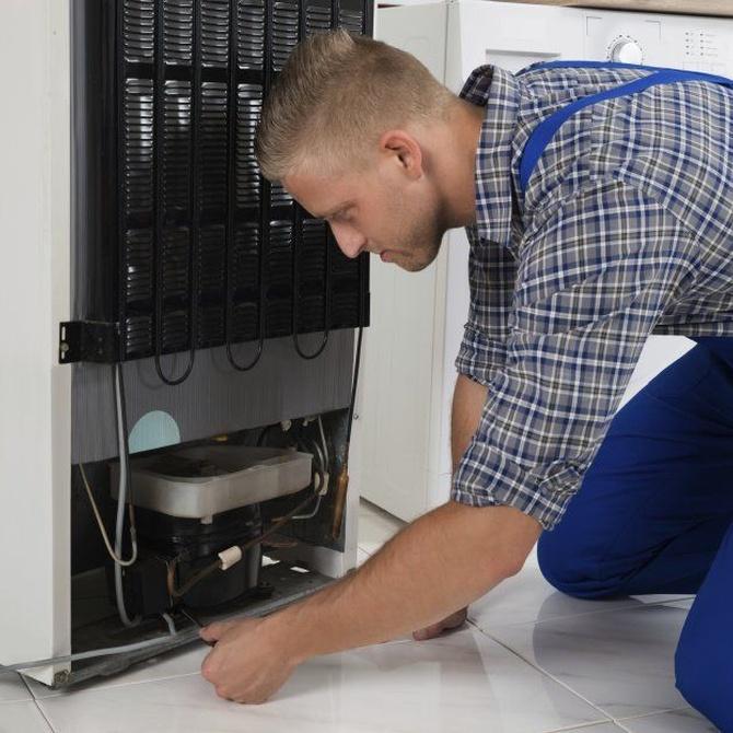 ¿Qué pasa a los 20 años de tener un frigorífico?
