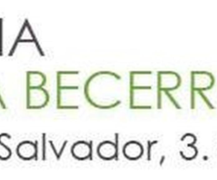 Tienda online: Tienda online de Mª Teresa Becerro Cereceda