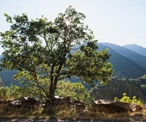 Un entorno idílico en La Rioja
