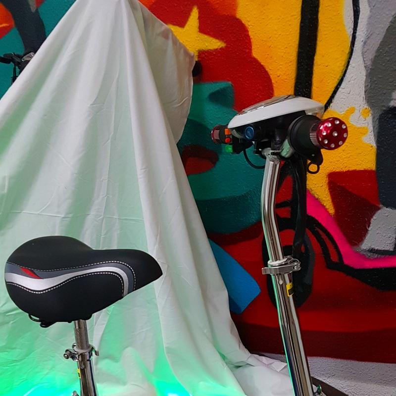 PATINETE ELECTRICO NIÑO, NIÑA.300W 36V precio: 250€: Productos y servicios de Scooter Family Electric